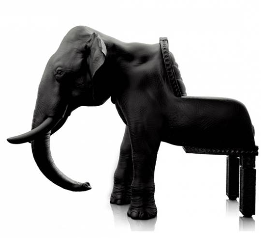 Maximo Riera's  elephant chair