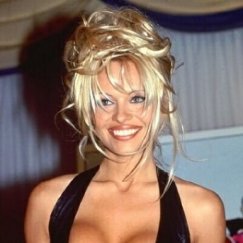 Pamela lee anderson wikipedia