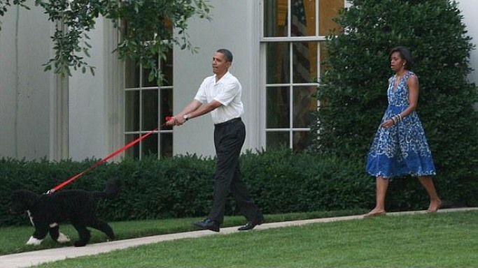 Photo of Barack Obama & his  Dog Bo