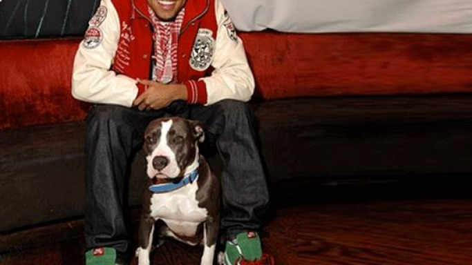 Chris Brown and his dog, Diamond